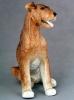 Erdel Terrier